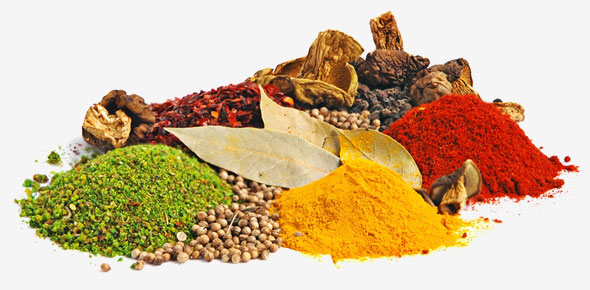 590x290_herbs_spices